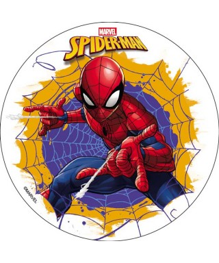 Disque Spiderman Marvel