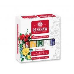 Kit Pâte à Fleur, Pâte de Modelage 5 x 100g Renshaw