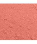 Colorant alimentaire plain and simple Rose bonbon Rainbow Dust