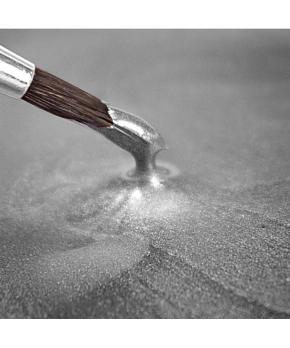 Peinture métallique argent Clair 25ml Rainbow Dust