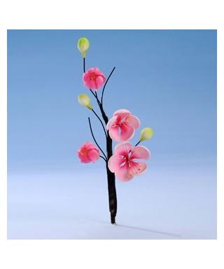 Bouquet Fleur de Pêcher