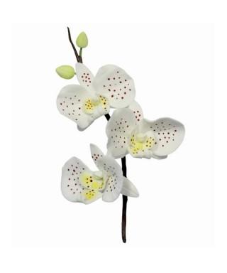 Emporte-pièce métal Orchidée set/3 PME art & craft