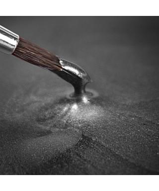 Peinture métallique Argent 25ml Rainbow Dust