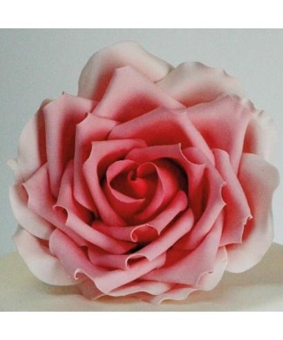 Grande Rose Pétale Ensemble de 3 pièces FMM Sugarcraft