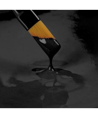 Peinture Noir 25ml Rainbow Dust
