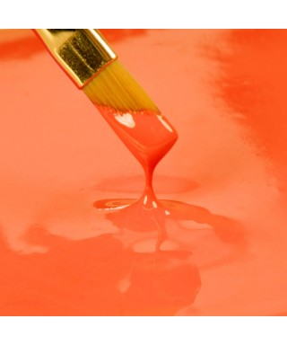Peinture Orange 25ml Rainbow Dust