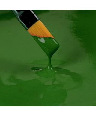 Peinture Vert 25ml Rainbow Dust