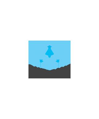 logo CakeFrame