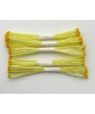 Étamines fine jaune moutarde set/250