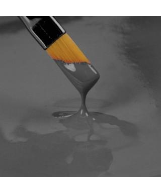 Peinture Gris 25ml Rainbow Dust