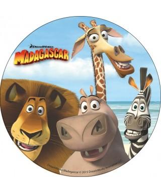 Disque en azyme Madagascar selfie