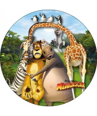 Disque en azyme Madagascar le film