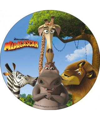 Disque en azyme Madagascar le film bisou collectif