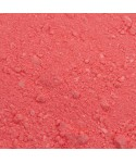 Colorant alimentaire plain and simple Fraise