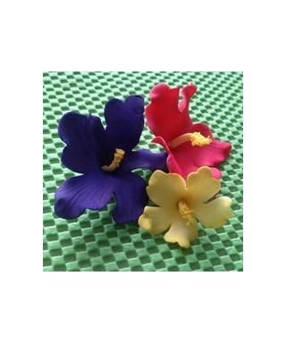 Emporte-pièce fleurs hawaïennes FMM